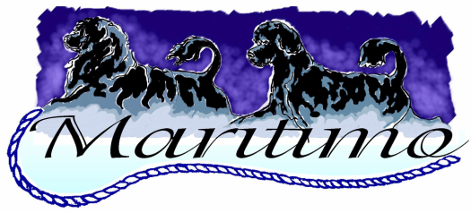Maritimo Portuguese Water Dogs- We are a PWDCA approved Portuguese Water Dod puppy breeder located in Ohio.